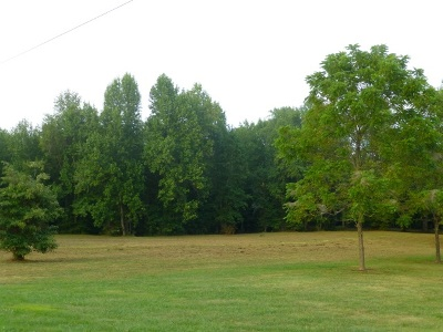 Ballard County Residential Lots & Land For Sale: Morning Meadows