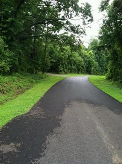 Smithland Residential Lots & Land For Sale: Blue Ridge Rd