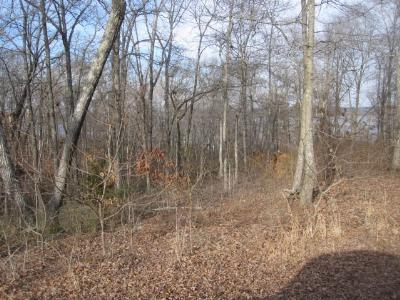 Residential Lots & Land For Sale: Lot 76 Blue Heron Lane