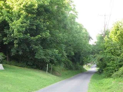 Kuttawa Residential Lots & Land For Sale: Holly Street
