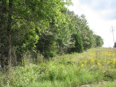 Residential Lots & Land For Sale: Red River Road
