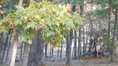 Gilbertsville Residential Lots & Land For Sale: 1001 Vista Dr