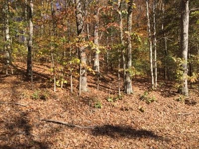 Residential Lots & Land For Sale: Lot 21k Rockcastle Shores
