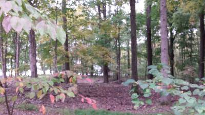 Cadiz Residential Lots & Land For Sale: #99 Canton Heights Iii