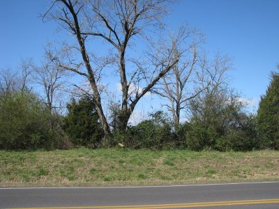 Calvert City Residential Lots & Land For Sale: 5900 Hwy 62