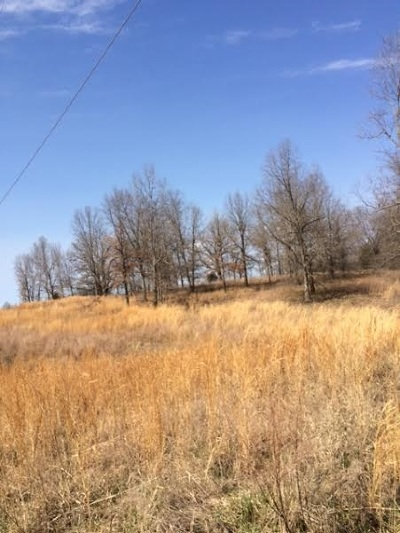 Smithland Residential Lots & Land For Sale: 733 Linley Road