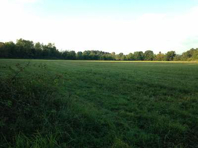 Paducah Residential Lots & Land For Sale: Rosebower Church Road
