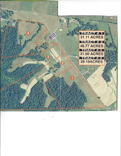 Kuttawa Residential Lots & Land For Sale: Highway 810 North
