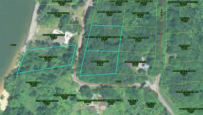Trigg County Residential Lots & Land For Sale: 304 Apache Trail