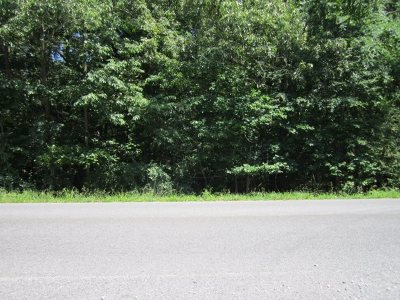 Gilbertsville Residential Lots & Land Contract Recd - See Rmrks: 3000 Little Bear Hwy