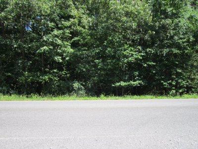 Gilbertsville Residential Lots & Land For Sale: 3000 Little Bear Hwy