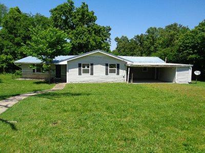 Calvert City Single Family Home For Sale: 1173 S Main St