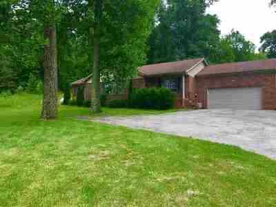 Trigg County Single Family Home For Sale: 49 Deer Run Road