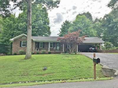 Kuttawa Single Family Home For Sale: 619 E Dogwood Drive