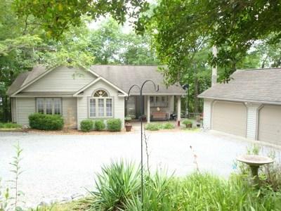 Kuttawa Single Family Home For Sale: 64 Wood Lane Circle