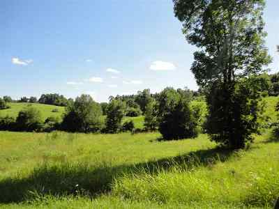 Kuttawa Residential Lots & Land For Sale: Lots 19-20 Rock Bowl Spring Ct