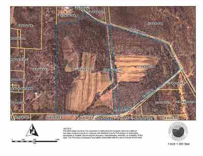 Benton Residential Lots & Land For Sale: 100 Acres On Dogtown Rd