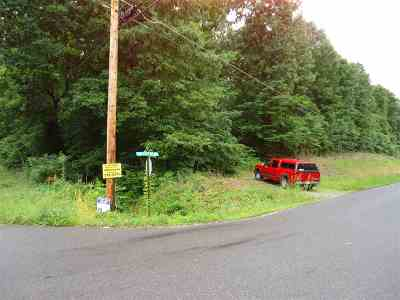 Calvert City Residential Lots & Land For Sale: SW Corner Us 95 And E.m. Hurley Rd