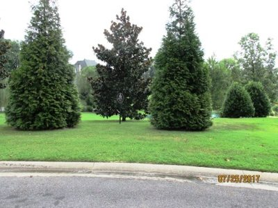 Paducah Residential Lots & Land For Sale: 255 High Pointe Drive