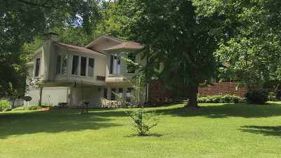 Trigg County Single Family Home For Sale: 165 Oliver Road