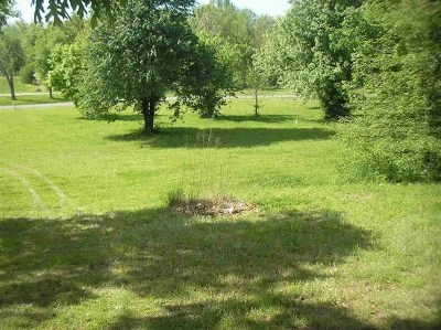 Calvert City Residential Lots & Land For Sale: Helena
