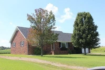 Kirksey KY Single Family Home For Sale: $165,000