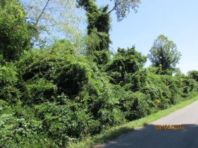 Paducah Residential Lots & Land For Sale: 173 Dove Ln