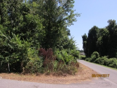 Paducah Residential Lots & Land For Sale: 193 Dove Ln