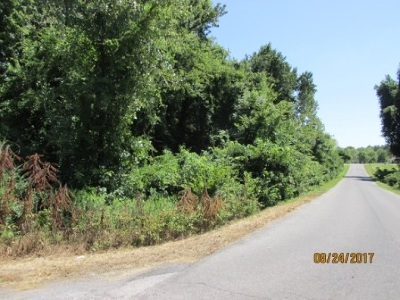 Paducah Residential Lots & Land For Sale: 185 Dove Ln