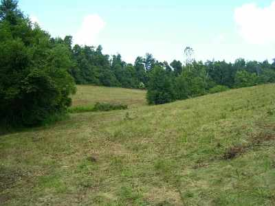 Caldwell County Residential Lots & Land For Sale: 313 Crider Dulaney Road