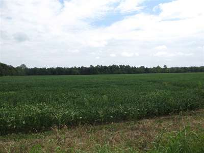 Paducah Farm For Sale: 2910 Hines Rd