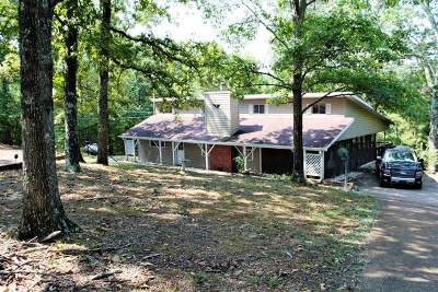 Murray, New Concord, Grand Rivers, Benton, Gilbertsville Single Family Home For Sale: 1491 Shoemaker Rd