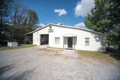 McCracken County Commercial For Sale: 5050 Leonard Futrell Rd