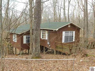 Trigg County Single Family Home For Sale: 177 Meadow