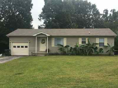 Calvert City Single Family Home For Sale: 37 Black Knight Ct