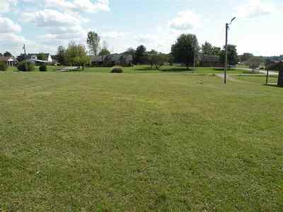 Caldwell County Residential Lots & Land For Sale: 89 Carner Hill Road