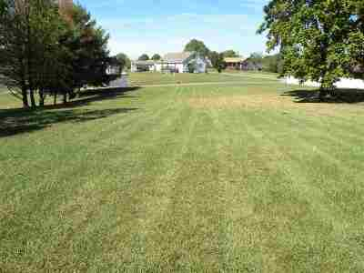 Lyon County Residential Lots & Land For Sale: Lake Scene