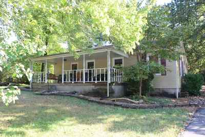 Grand Rivers Single Family Home For Sale: 307 Hill Road