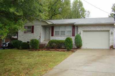 McCracken County Single Family Home For Sale: 377 Longview