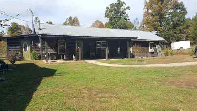 Trigg County Single Family Home For Sale: 382 Samsil Cemetery Rd.