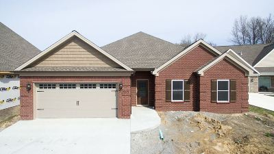 Paducah KY Single Family Home For Sale: $252,500