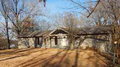 Gilbertsville KY Single Family Home For Sale: $247,500