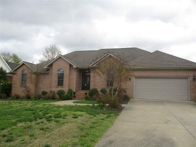 Paducah Single Family Home For Sale: 225 Willow Lake Drive