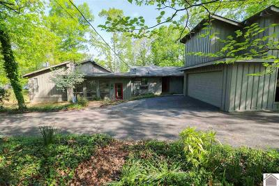 Calloway County, Marshall County Single Family Home For Sale: 62 Griffith Lane