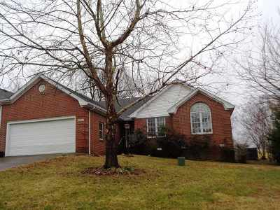 Paducah Single Family Home For Sale: 201 Grace Nell Drive