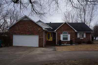 Murray Single Family Home For Sale: 141 East Y Drive