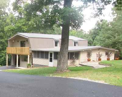 Gilbertsville KY Single Family Home For Sale: $425,000