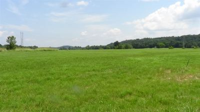 Smithland Residential Lots & Land For Sale: Highway 70
