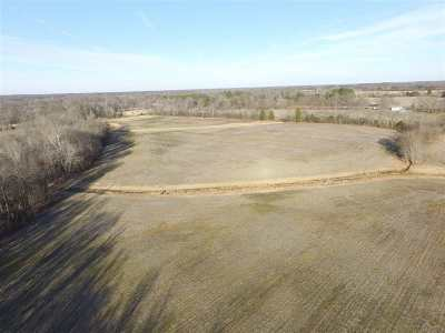 Calloway County Residential Lots & Land For Sale: Tom Taylor Road