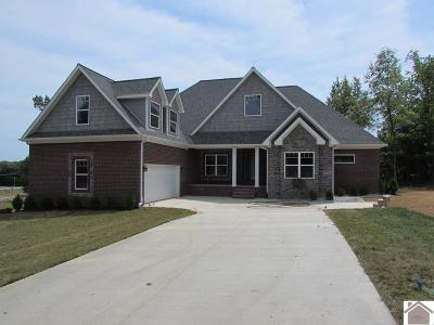 Paducah Single Family Home For Sale: 180 Overlook Drive